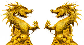 Double golden dragon statue. Double golden dragon statue at isolated on white background Stock Images