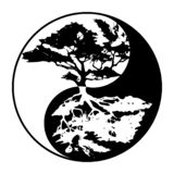 Yin yang tree in black and white royalty free stock photos