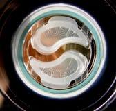 Ying & Yang Disc Fotografia Stock Libera da Diritti