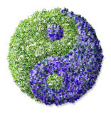 Ying yang. Ying and yang symbol, made of flowers Royalty Free Stock Images