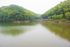 Yixing bamboo sea park Royalty Free Stock Photography