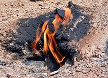 Żyje ogienia obrazy stock