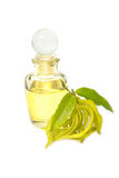Ylang-ylang aroma massage oil. Ylang-ylang aroma essential massage oil Royalty Free Stock Photography