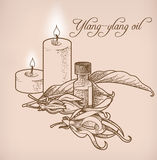 Ylang-ylang essential oil and candles Stock Photos