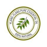 Ylang-ylang, etiqueta del aceite esencial, planta aromática Fotos de archivo