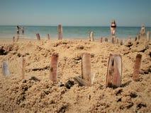 Żyletek skorupy wtykali w piasku na słonecznym dniu Obraz Royalty Free