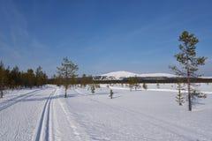 Ylläs, Лапландия Стоковые Изображения RF