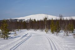 Ylläs, Laponia Fotografía de archivo libre de regalías