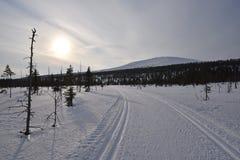 Ylläs, Lappland Lizenzfreie Stockbilder