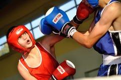 Yngre boxningturnering Royaltyfri Fotografi