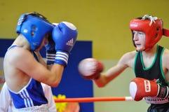 Yngre boxningturnering Royaltyfria Foton