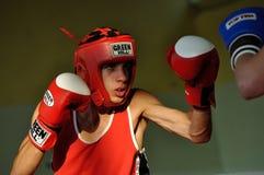 Yngre boxningturnering Royaltyfri Foto