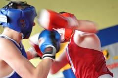 Yngre boxningturnering Royaltyfri Bild