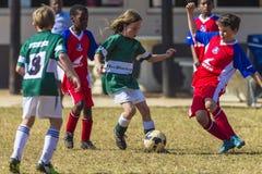 Yngre fotboll klumpa ihop sig utmaning Royaltyfria Bilder