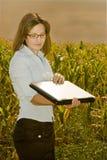 inżynierem rolnictwa pole Fotografia Stock