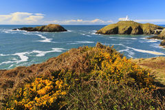 Ynys Onnen and Strumble Head Lighthouse Royalty Free Stock Photo