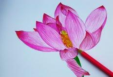 Yo dibujo de lápiz de flores Fotografía de archivo