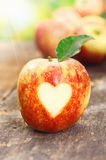 Yo manzanas de amor Imágenes de archivo libres de regalías