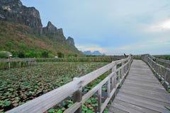 yod roi sam Таиланда национального парка Стоковые Фото