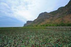 yod roi sam Таиланда национального парка Стоковое Изображение