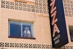 Yoda in the window