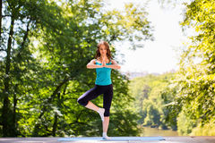 Yoga, équilibre, méditation photo libre de droits