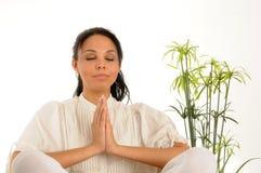 Free Yoga Stock Photos - 11254003