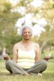 Yoga aîné de femme en stationnement Photos libres de droits