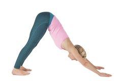 Yoga_Adho Mukha Svanasana_step_5 Stock Image
