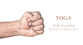 Yoga Adi mudra. Hand in Adi mudra by Indian man isolated at white background. Gesture for pranayama. Free space for your text Stock Photo