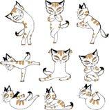 Yoga anteriore del gatto di yoga della stampa della maglietta del petto Immagine Stock