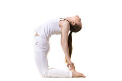 Yoga asana Ustrasana. Young fitness model in white sportswear doing yoga or pilates training, asana Ustrasana (Camel yoga Pose), side view, studio shot, isolated stock photography