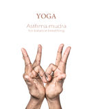 Yoga asthma mudra. Hands in asthma mudra by Indian man isolated at white background. Gesture for balance breathing. Free space for your text and can be used in Stock Image