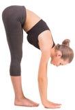 Yoga Royalty Free Stock Photography