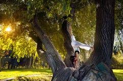 Yoga auf dem Baum Stockbild
