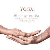 Yoga Bhairav mudra. Hands in Bhairav mudra by Indian man isolated at white background. Gesture for meditation and pranayama. Free space for your text Royalty Free Stock Photography