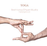 Yoga Bodhisattva dhyan mudra. Hand in Bodhisattva dhyan mudra by Indian man isolated at white background. Free space for your text Stock Photos