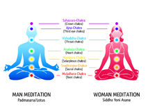 Yoga chakras diagram Royalty Free Stock Photos