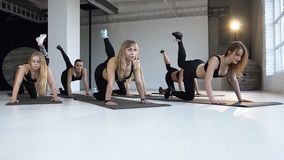 Yoga class of beautiful young women stretching flexible body practicing poses on exercise mat enjoying warm up preparing