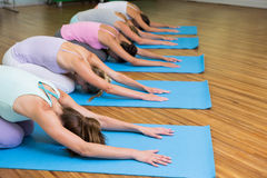 Yoga class in childs pose in fitness studio Stock Photos