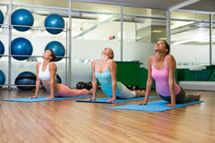 Yoga class in cobra pose in fitness studio Stock Photo