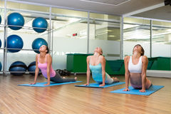 Yoga class in cobra pose in fitness studio Stock Photography