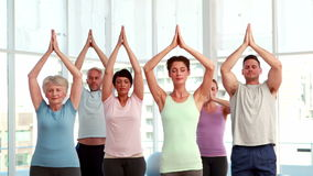 Yoga class doing tree pose together Royalty Free Stock Photos