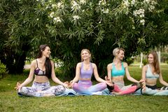 Group of young people have meditation on yoga class. Yoga concept. royalty free stock image
