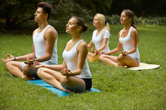 Yoga Class. Group of People Meditating At Summer Park Royalty Free Stock Photos