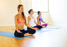 Yoga Class. Group of Young People Relaxing Practicing Yoga, Healthy Lifestyle Royalty Free Stock Images