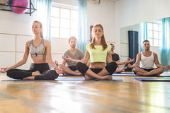 Yoga class in a gym Royalty Free Stock Image