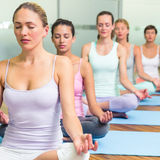 Yoga class in lotus pose in fitness studio Royalty Free Stock Images