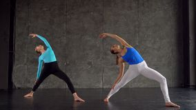 Yoga class multi racial group of women exercising healthy lifestyle in fitness studio yoga warrior poses stock video