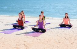 Yoga class at sea beach in sunny day ,Group of people doing lotu Stock Image